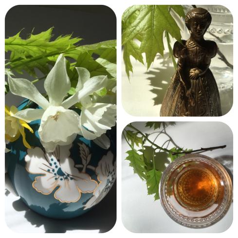 20160430 Daffodil-Brass lady montage